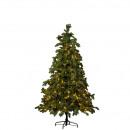 LED Fir Norma 248LED, H165cm, D107cm, green Tips: